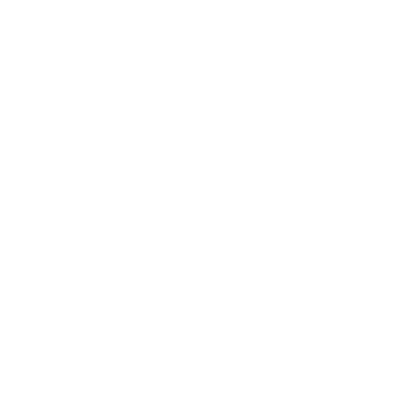 Quality Product Guarantee icon